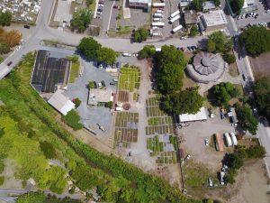 drone service in DIATOM